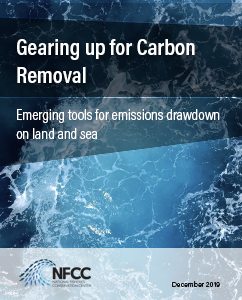 Cover of Gearing up for Carbon Removal PDF