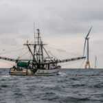 Offshore wind: Seven things every fisheries professional needs to know