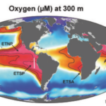 Ocean 'Dead Zones' Are Releasing One of The Worst Greenhouse Gases